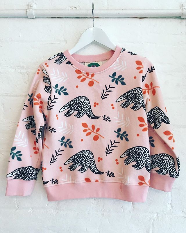 Little Leonard St Pink Pangolin Jumper